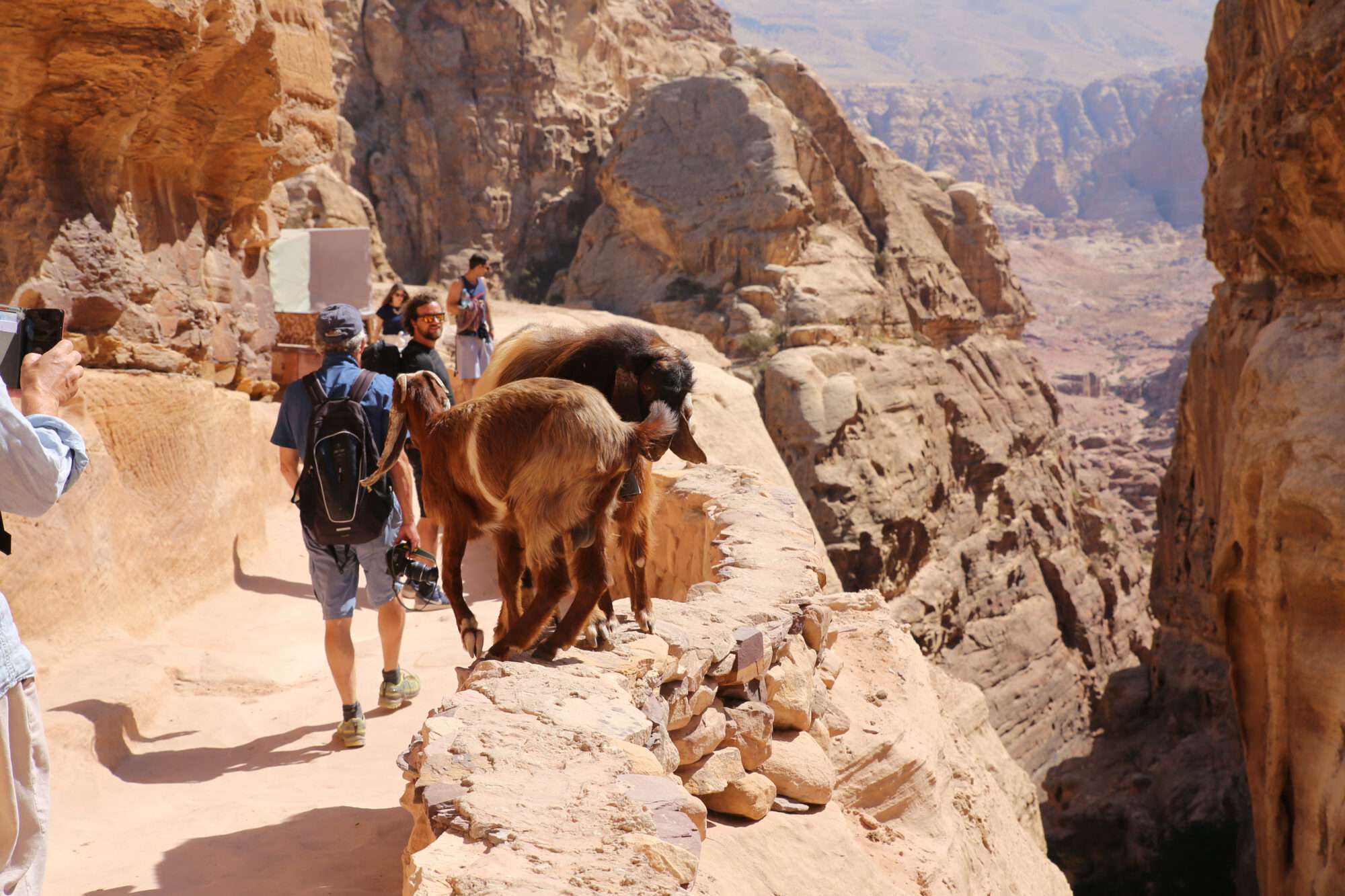 jordanie-petra
